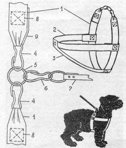 Как сделать поводок собаке своими руками